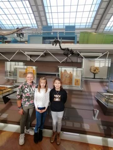 Visite au musée des Sciences naturelles à Bruxelles